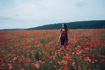 Beauty, summer, spring, poppy seed. Woman in poppy flower field, harvest. Opium poppy, botanical plant, ecology, woman. Drug and love intoxication, opium, medicinal. Poppy, Remembrance day, Anzac Day. Stock Photo