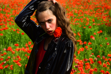 Opium poppy, botanical plant, ecology, woman. Beauty, summer, spring, poppy field. Drug and love intoxication, opium, fashion. Poppy, Remembrance day, Anzac Day. Woman with poppy flower in red lips.