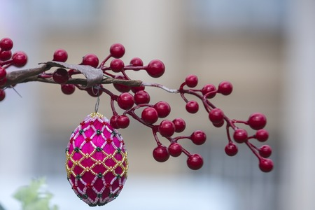 Symbol of new life, fertility or rebirth. Symbol of easter celebration and spring. Reklamní fotografie