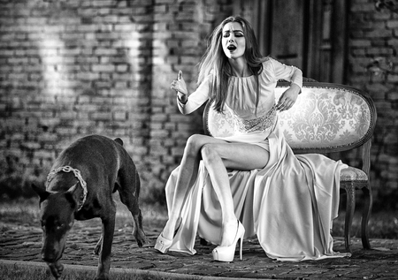 Sensual woman call dog. Girl in fashionable dress, high heel shoes on sofa. Pet, companion, friend, friendship. Fashion, beauty, style. Party, holidays celebration, black and white Stockfoto