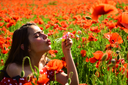 Poppy, Remembrance day, Anzac Day. Summer, spring, poppy flower. Opium poppy, youth, freshness, ecology, woman. Drug, opium, narcotics, carelessness. Woman blow bubble in poppy field, dreams, wishes. Standard-Bild