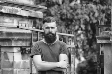 Handsome young stylish hipster man with long beard in grey shirt standing outdoor near building with gate and tree