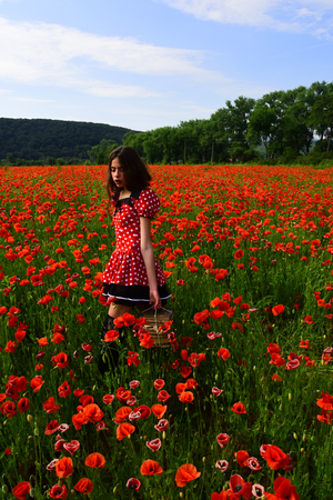 Woman with books, education, business, grammar. Poppy, new technology, Remembrance day. Opium poppy, agile business, ecology. Journalism and writing, summer. Drug, narcotics, opium, study. knowledge Stok Fotoğraf