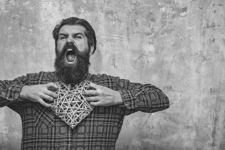 Angry bearded man, caucasian hipster, with long beard and moustache in plaid shirt holds wicker heart, love gift for valentines day, shouting on beige grunge wall background