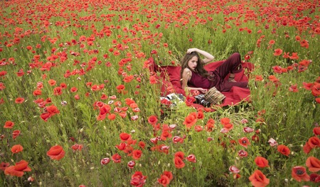 Journalism and writing, summer. Opium poppy, agile business, ecology. Drug, narcotics, opium, woman with typewriter, camera, book. Poppy, Remembrance or Anzac Day. Woman writer in poppy flower field. Banque d'images