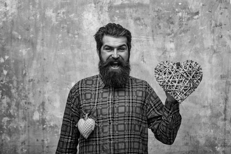 Bearded happy man, Caucasian hipster, with long beard and moustache in plaid shirt with two hearts, wicker and rosy textile
