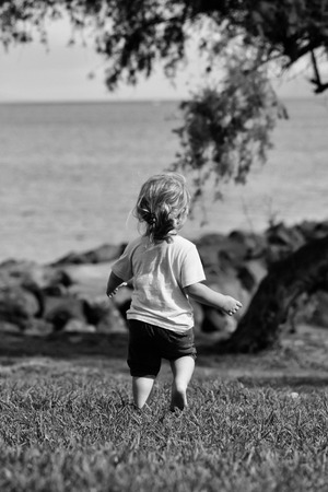 Cute baby boy with blond hair ponytail in blue tshirt and shorts runs barefoot on green grass by sea on sunny summer day on natural background Banco de Imagens