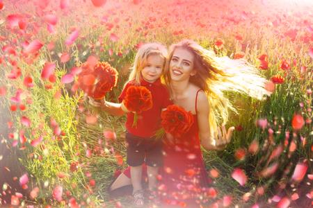 Booming flowers. Blooming poppy flower