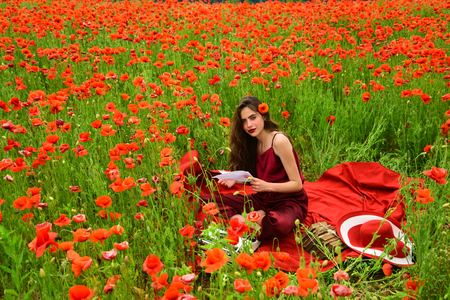 Opium poppy, agile business, ecology. Drug, narcotics, opium, woman with typewriter, camera, book. Woman writer in poppy flower field. Poppy, Remembrance or Anzac Day. Journalism and writing, summer. Reklamní fotografie