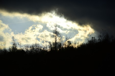 Black clouds in autumn sky. Silhouettes of black trees without leaves.