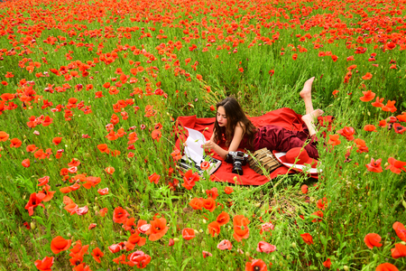 Poppy, Remembrance or Anzac Day. poppy flower field with woman writing Stock Photo