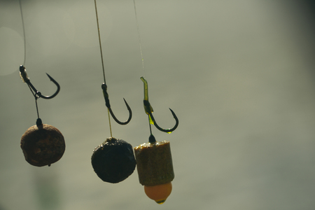 Baits, hooks, sinkers preparing for carp fishing. Stockfoto