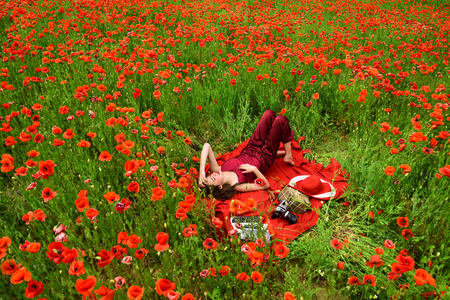 Poppy remembrance or anzac day poppy flower field with woman poppy remembrance or anzac day poppy flower field with woman writing stock photo mightylinksfo