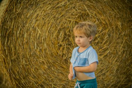 Agritourism, eco tourism, vacation, travelling. Agritourism, summer on farm, harvest season.