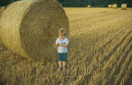 Child and bales of hay on field. Childrens summer activities. Stack of hay. Straw in meadow. Foto de archivo - 98560531