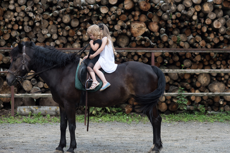 Equine therapy, recreation concept. Children sit in rider saddle on animal back. Friend, companion, friendship. Sport, activity, entertainment. Girls ride on horse on summer day. riding school Banco de Imagens