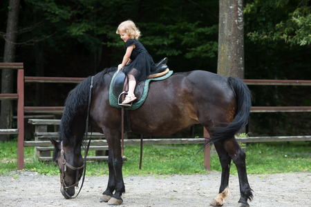 Child smile in rider saddle on animal back. Girl ride on horse on summer day. Friend, companion, friendship. Equine therapy, recreation concept. Sport, activity, entertainment. riding school