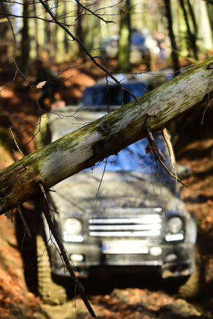 Dirty offroad cars overcome obstacles in fall forest, selective focus. Stock Photo