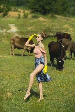 그들이 먹는 동안 가축과 노란 장갑에 수의사