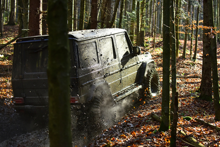 Dirty offroad car with fall forest on background on sunny autumn day. SUV covered with mud on path covered with leaves. Crossover driving with cloud of smoke, back view. 4x4 racing concept.