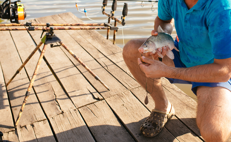 Fish hooked on mouth in male hands, bait fishing. Bait, bait fishing, fish catching. Carp, crucian carp, trout on fishhook, angling. Trophy, success, achievement.