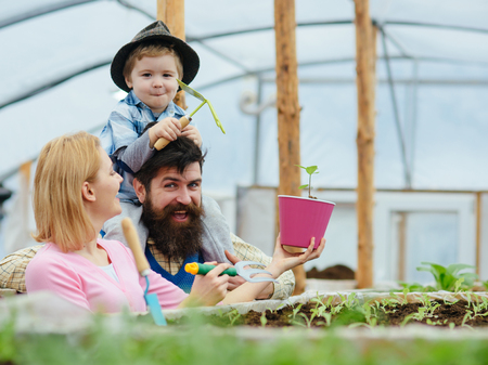 Turn back mum holding gardening fork and pink flowerpot while her bearded husband holds their kid on his shoulders. Smiling family having fun in greenhouse.