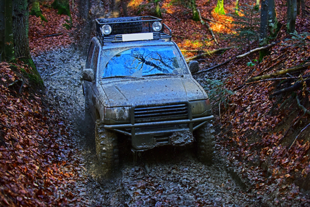 Dirty offroad car with fall forest on background on sunny autumn day. SUV covered with mud on path covered with leaves. Tires, lights and bonnet covered with dirt. Impassibility of roads concept.