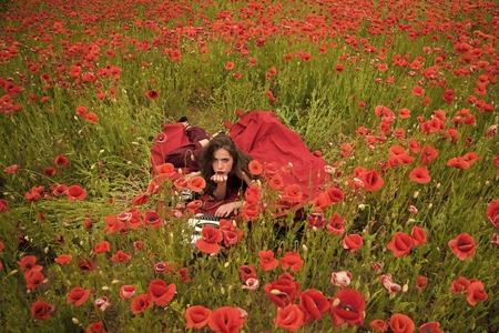 Woman writer in poppy flower field.