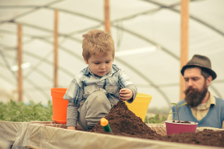 Cute blond kid sitting in box full of soil. Small boy playing with ground mound. Bearded man in hat standing in the back blurred. 版權商用圖片