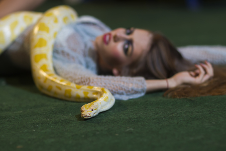 Woman relax with albino python. Woman with makeup face and yellow snake. 版權商用圖片
