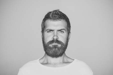 Guy or bearded man on grey background.