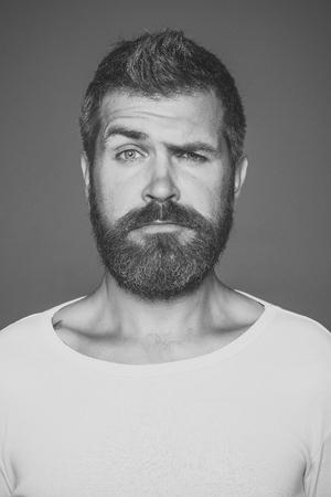 Guy or bearded man on grey background