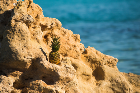 pineapple on stone in sea water. summer vacation and travel concept. vitamin and dieting with fresh fruit. healthy lifestyle and organic food Stock Photo