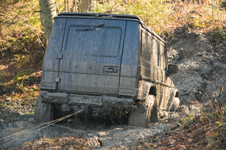 Crossover on nature background, reverse, back view. 4x4 racing concept. Dirty offroad car stuck in dirt on sunny autumn day. SUV with car winch on countryside road. Banco de Imagens
