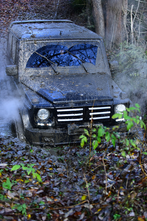 Car moving through a large puddle of mud with fallen leaves in woods. Offroad race in forest. Clouds of smoke around powerful SUV. Impassibility of roads concept. Stock Photo