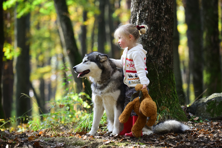 Little girl with dog an autumn woods.