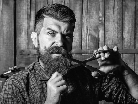 bearded man barber with scissors