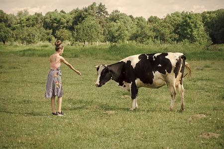 Veterinarian on farm feeding cow.