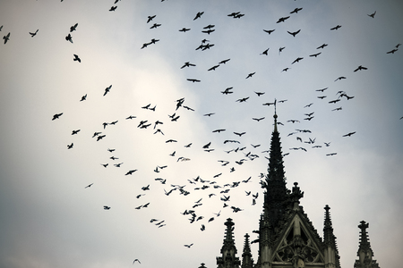 Birds fly to warmer lands. Migratory birds concept. Birds fly above tower or belfry. Black birds or crows in dark sky. Stock fotó
