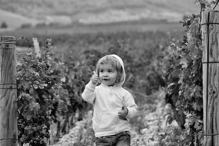 Cute baby boy child with curly blond curly hair in gray hoody and jeans show cool on vineyards background Imagens