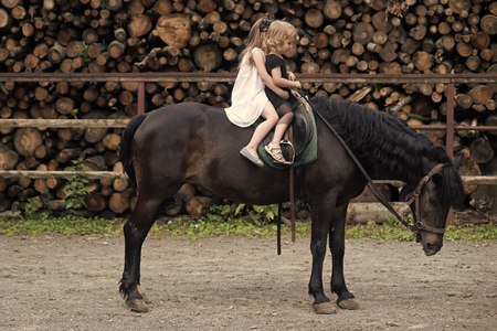 Children sit in rider saddle on animal back Stock Photo