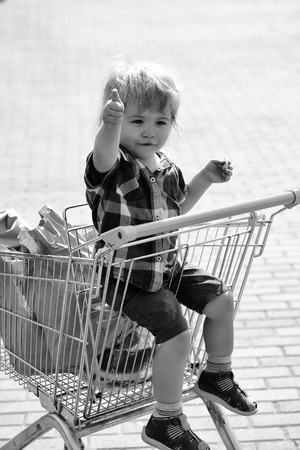 Cute boy in shopping trolley