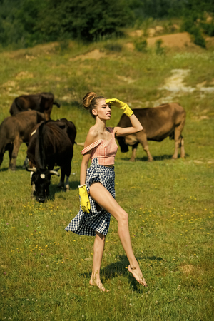 Vet in yellow gloves with cattle Фото со стока