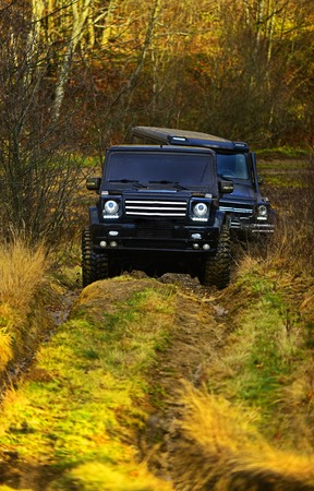 SUV or two black offroad cars on fall nature background. Offroad race in autumn forest. Car racing, extreme and four wheel drive vehicles concept 版權商用圖片