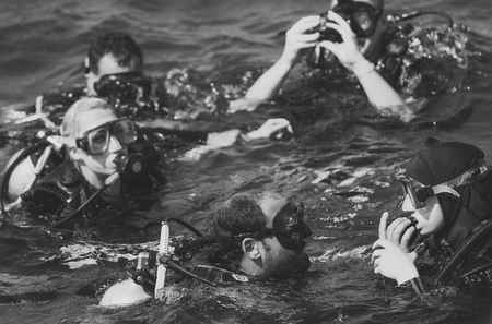 Group of snorkeling divers swimming in sea 新聞圖片