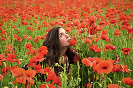 Remembrance day, Anzac Day. Remembrance and memorial day. Beauty Fashion model girl. Fashion look.