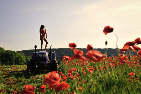 Woman posed on the tractor on the flower field.