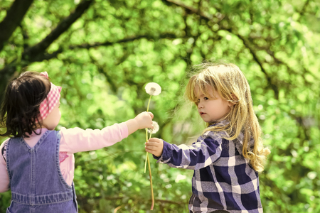 Kids enyoj happy day. Boy give dandelion flower for girl
