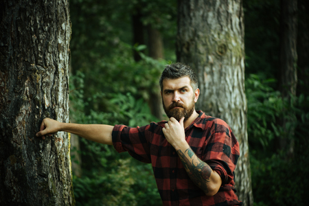 Thoughtful bearded man in lumberjack shirt with tattoo on his arm wandering in forest. Lone hiker exploring wonders of nature, environment concept.