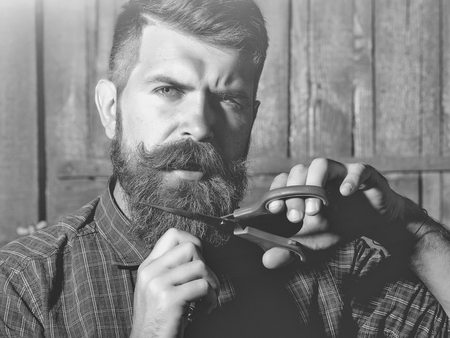 Man looking at camera. bearded man barber with scissors Stok Fotoğraf